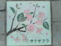 0516-01のコピー.jpg